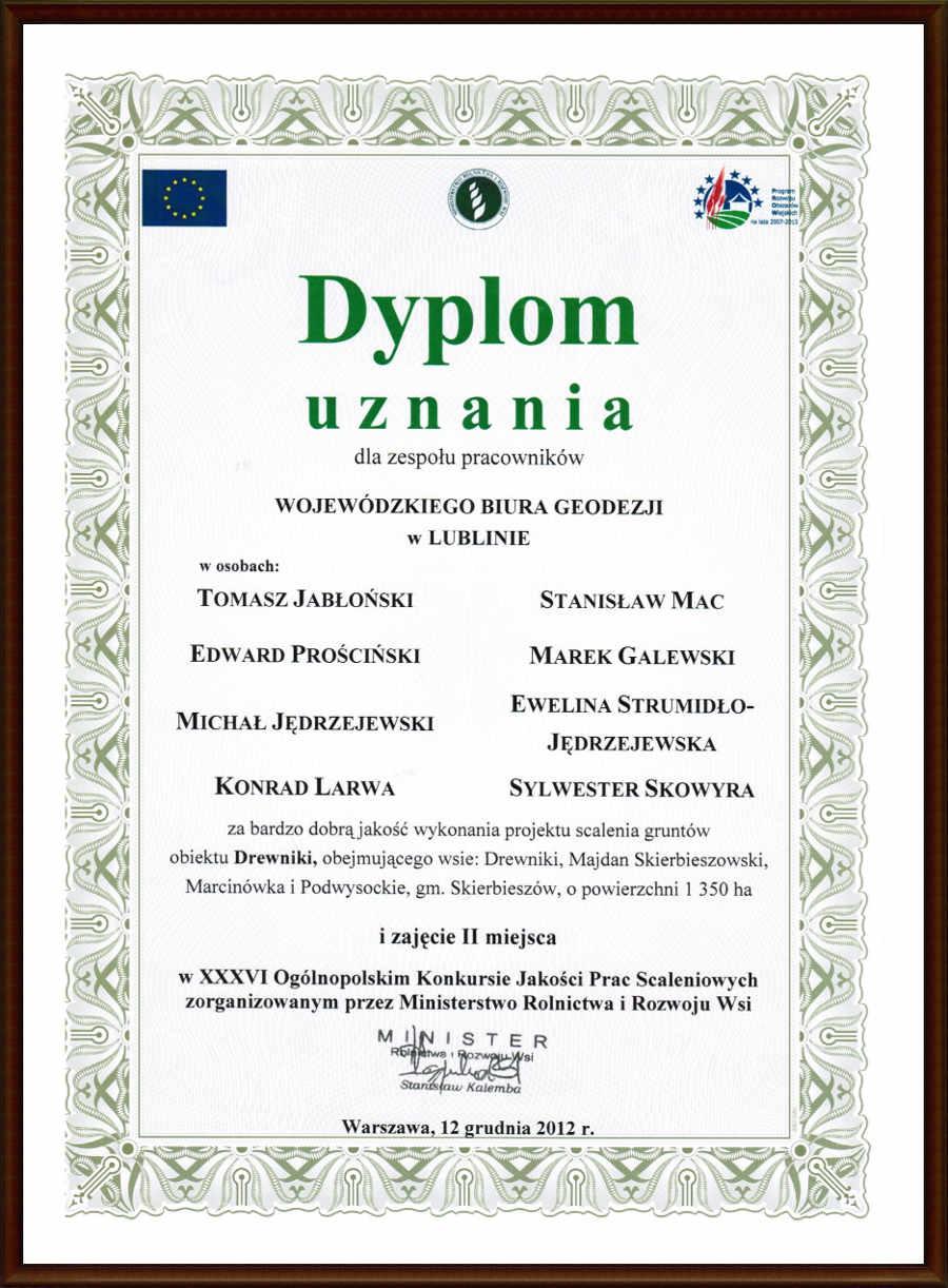 Drewniki2012