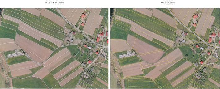 Zdjęcie satelitarne przedstawiające różnice przed i po scaleniu.
