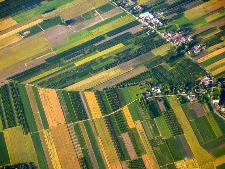 Działki i pola rolnicze - widok z lotu ptaka
